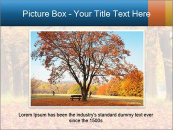 Beautiful autumn forest PowerPoint Template - Slide 15