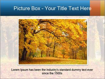Beautiful autumn forest PowerPoint Template - Slide 16