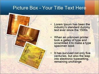 Beautiful autumn forest PowerPoint Template - Slide 17