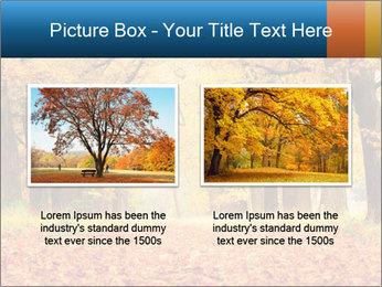 Beautiful autumn forest PowerPoint Template - Slide 18