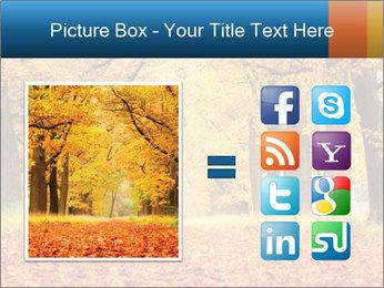 Beautiful autumn forest PowerPoint Template - Slide 21
