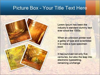 Beautiful autumn forest PowerPoint Template - Slide 23