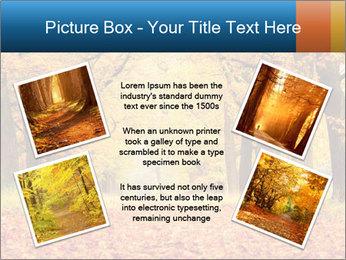 Beautiful autumn forest PowerPoint Template - Slide 24