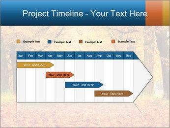 Beautiful autumn forest PowerPoint Template - Slide 25
