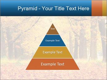 Beautiful autumn forest PowerPoint Template - Slide 30