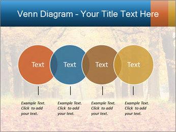 Beautiful autumn forest PowerPoint Template - Slide 32