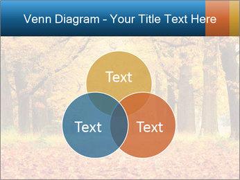 Beautiful autumn forest PowerPoint Template - Slide 33