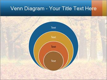 Beautiful autumn forest PowerPoint Template - Slide 34