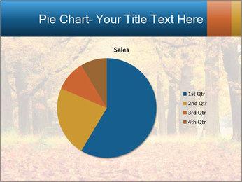 Beautiful autumn forest PowerPoint Template - Slide 36