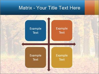 Beautiful autumn forest PowerPoint Template - Slide 37