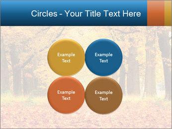 Beautiful autumn forest PowerPoint Template - Slide 38