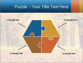 Beautiful autumn forest PowerPoint Template - Slide 40