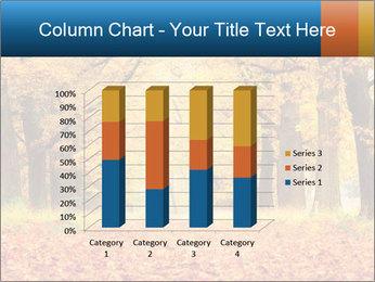 Beautiful autumn forest PowerPoint Template - Slide 50