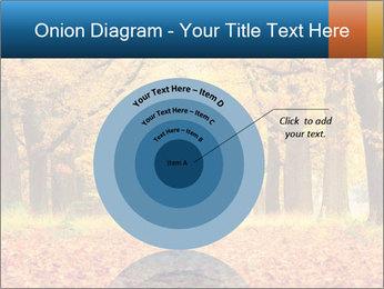 Beautiful autumn forest PowerPoint Template - Slide 61