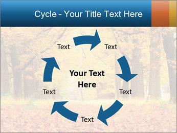 Beautiful autumn forest PowerPoint Template - Slide 62