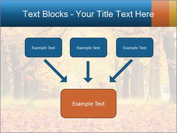 Beautiful autumn forest PowerPoint Template - Slide 70
