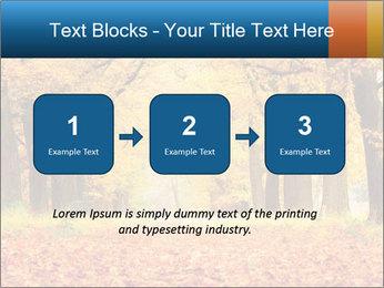 Beautiful autumn forest PowerPoint Template - Slide 71