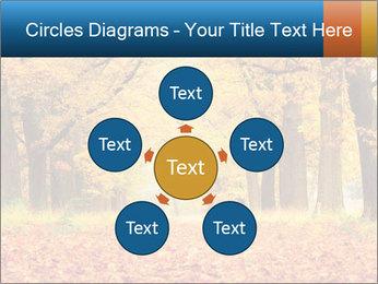 Beautiful autumn forest PowerPoint Template - Slide 78