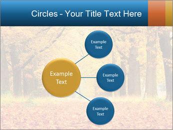 Beautiful autumn forest PowerPoint Template - Slide 79