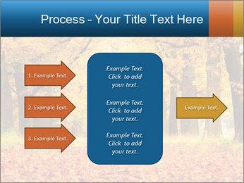 Beautiful autumn forest PowerPoint Template - Slide 85