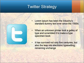 Beautiful autumn forest PowerPoint Template - Slide 9