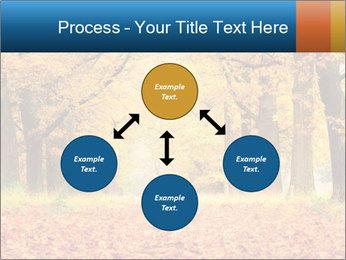 Beautiful autumn forest PowerPoint Template - Slide 91
