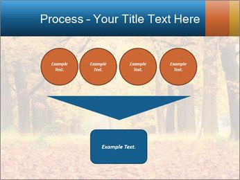 Beautiful autumn forest PowerPoint Template - Slide 93