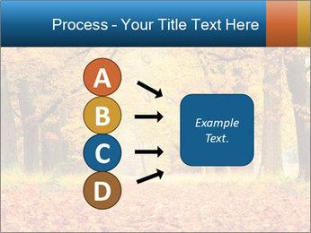 Beautiful autumn forest PowerPoint Template - Slide 94