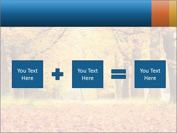 Beautiful autumn forest PowerPoint Template - Slide 95