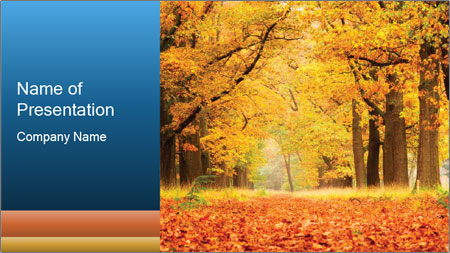 Beautiful autumn forest PowerPoint Template