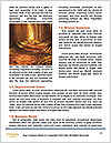 0000093941 Word Templates - Page 4