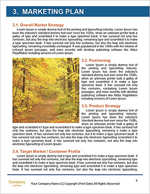 0000093941 Word Template - Page 8
