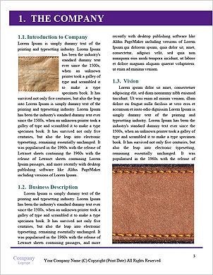 0000093944 Word Template - Page 3
