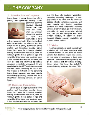 0000093945 Word Template - Page 3