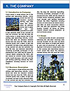 0000093951 Word Template - Page 3