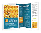 0000093953 Brochure Templates