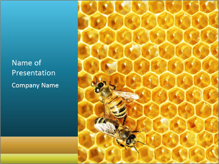 Working bees on honey cells PowerPoint Template