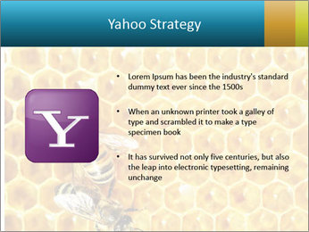 Working bees on honey cells PowerPoint Template - Slide 11