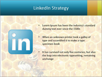 Working bees on honey cells PowerPoint Template - Slide 12