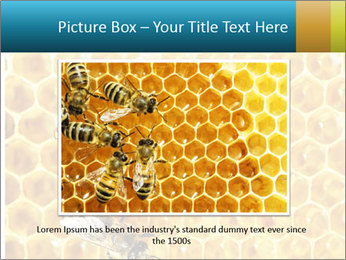 Working bees on honey cells PowerPoint Template - Slide 15