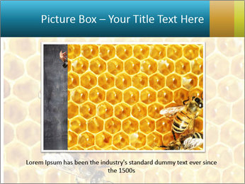 Working bees on honey cells PowerPoint Template - Slide 16