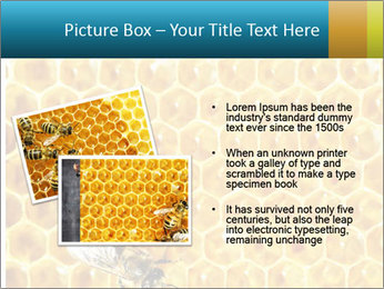 Working bees on honey cells PowerPoint Template - Slide 20