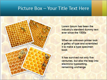 Working bees on honey cells PowerPoint Template - Slide 23