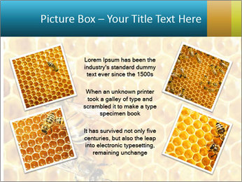 Working bees on honey cells PowerPoint Template - Slide 24
