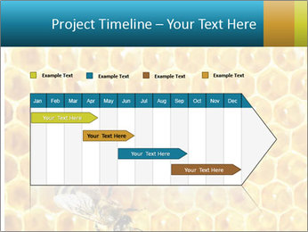 Working bees on honey cells PowerPoint Template - Slide 25