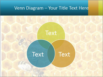 Working bees on honey cells PowerPoint Template - Slide 33