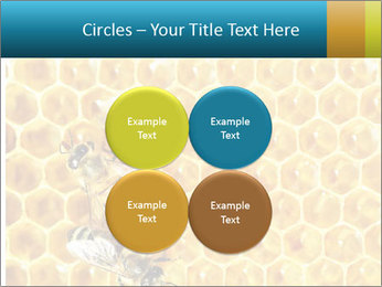 Working bees on honey cells PowerPoint Template - Slide 38