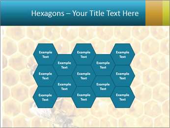 Working bees on honey cells PowerPoint Templates - Slide 44
