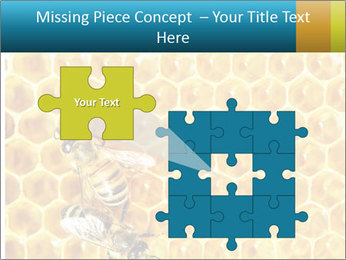 Working bees on honey cells PowerPoint Template - Slide 45