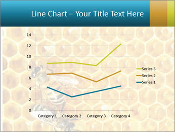 Working bees on honey cells PowerPoint Template - Slide 54